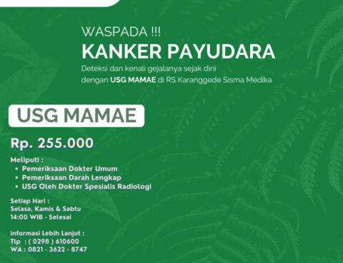 Pelayanan USG Mamae